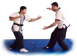 I løpet av de neste ti ukene skal jeg presentere ti ulike kampformer som kan minne om judo. Følg med...